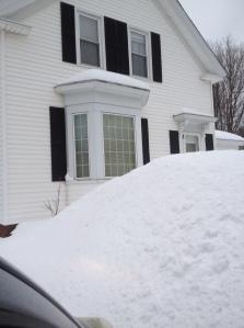 Michele's House in February
