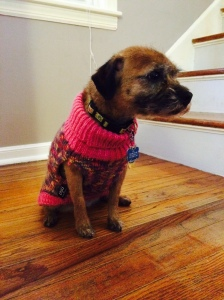 CoryinSweater